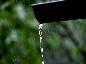 rain drops4