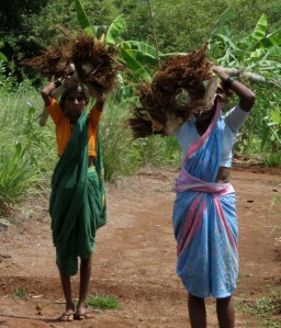 carrying the bamboo for planting